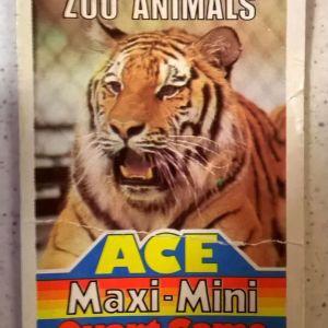 Ace Maxi Mini Quart Card Game