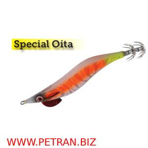 DTD SPECIAL OITA.