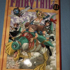 fairy tale manga volume 10+11