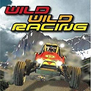 WILD WILD RACING - PS2