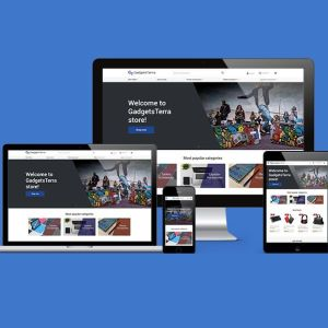 Κατασκευή αυτόματου Dropshipping e-shop Premium