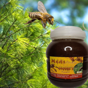 Πωλείται αγνό μέλι βάμμα πρόπολης και Κεραλοιφή
