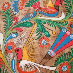 Πινακας  με θεμα τα πουλια πολυχρωμος με κορνιζα 53*35 με τη κορνιζα 63*45