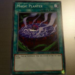 Magic Planter