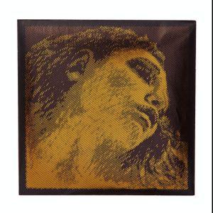 Σετ Χορδών Pirastro Evah Pirazzi Gold
