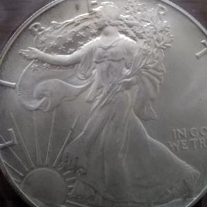 fine silver one dollar