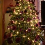 Χριστουγεννιάτικο δέντρο σε άριστη κατάσταση