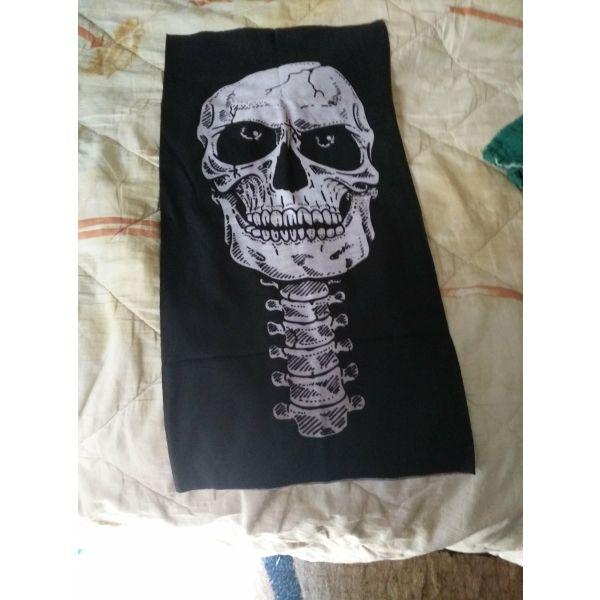 lemodetis michanis skeletos kranio
