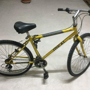 Ποδήλατο Ideal Comfort