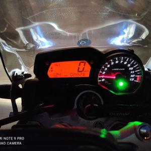 Yamaha Fz-1 1000 Naked 09