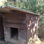 Σπίτι σκύλου για κήπο
