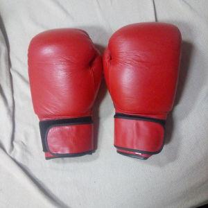 Γάντια προπόνησης 16 οz