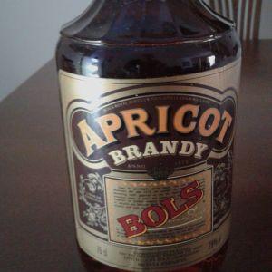 Apricot brandy  BOLS 75ml
