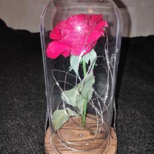 Τριανταφυλλο Αιωνιας Αγαπης με LED