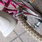 """ποδήλατο (κοριτσίστικο) bmx 20"""""""