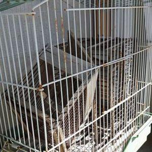 2 κλουβια για πουλάκια