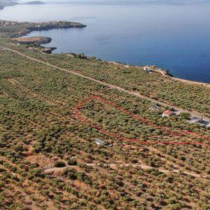 Πωλείται οικόπεδο 6220 τ.μ. Μεταξύ Στουπας και Αγιο Νικόλαο Περιοχη Μανη (Ελλαδα)