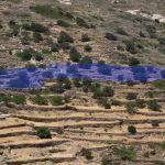 Πωλείται αγροτεμάχιο 2.370 τ.μ, 21 ελιές, εκτός σχεδίου, θέα βουνό, στην περιοχή Ελαιώνας.
