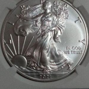 One Dollar 1oz silver