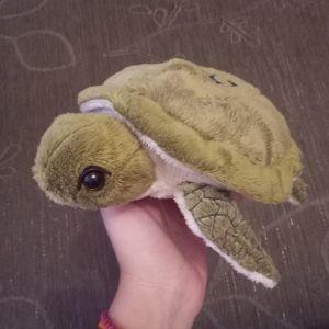 Χελώνα λούτρινη