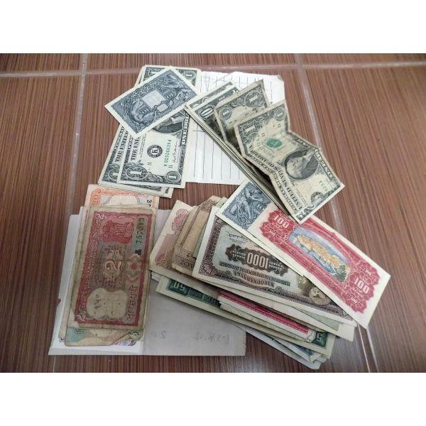 xena chartina +dollaria