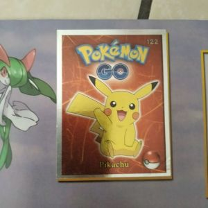 Άλμπουμ Pokemon με κάποια σπάνια pokemon