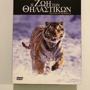 8 DVD  ΤΟΥ BBC Η ΖΩΗ ΤΩΝ ΘΗΛΑΣΤΙΚΩΝ ΚΑΙ Η ΖΩΗ ΤΩΝ ΠΟΥΛΙΩΝ