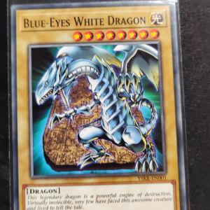Blue Eyes White Dragon (common)