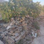 Πέτρα Καρύστου