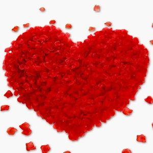 Πέταλα κόκκινα τριαντάφυλλα τεχνητά τιμή προς πώληση η τσάντα 500 τεμάχια του για να αγορασω