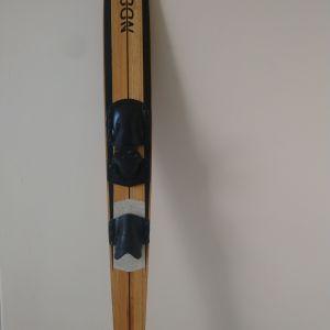 θαλάσσιο   Slalom Ski