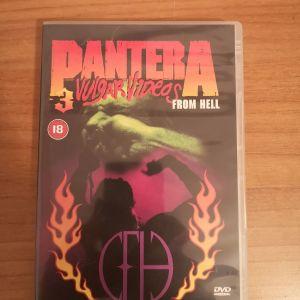 DVD pantera