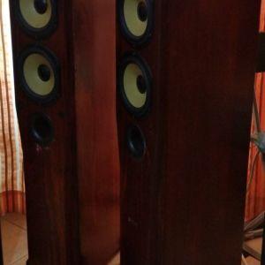 Ηχεία Hi End Roister Status 8.2 ατόφιο ξύλο οξιάς