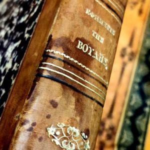 Εφημερίς των Συζητήσεων της Βουλής, έτος 1871, Περίοδος Γ', Σύνοδος Β' δερματόδετο, χρυσοτυπία, Βασιλεία Γεωργίου Α', συλλεκτικό δυσεύρετο