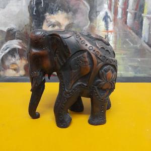 Ελεφαντας ινδιας ,παστα