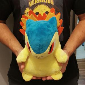Pokémon tyhdlosion (big)