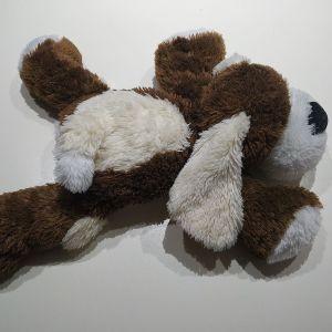 Σκυλακι - αρκουδος