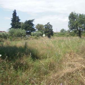 ΣΙΘΩΝΙΑ Νικήτη Χαλκιδικής, οικόπεδο 595 τ.μ., εντός σχεδίου, σ.δ. 0,6