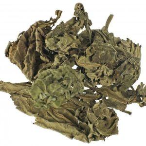 Σάλβια των Μάντεων (Salvia Divinorum) αποξηραμένα φύλλα 10 γρ