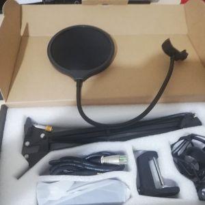 επαγγελματική κάρτα ήχου και ένα επαγγελματικό μικρόφωνο