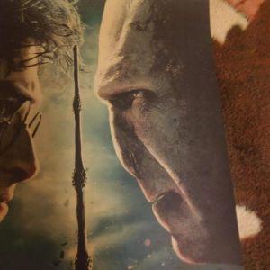 Συλλεκτικη Αφισα Harry Potter Vs Lord Voldemort