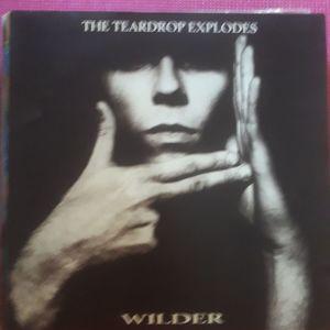 TEARDROP EXPLODES (βινυλιο/δισκος pop rock/new wave)