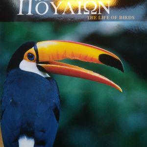 εκπαιδευτικό DVD  Η ζωή των πουλιων