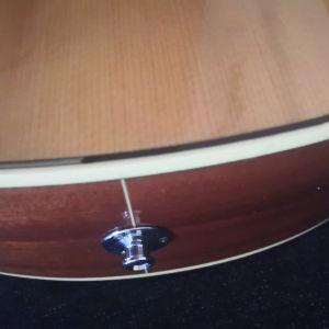 ακουστική κιθάρα Takamine